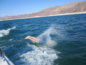 swimming, Lake Mead Las Vegas